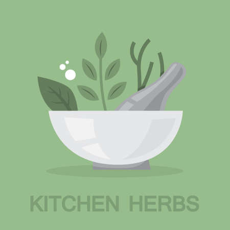 Spice and herbs for cooking the delicious food collection