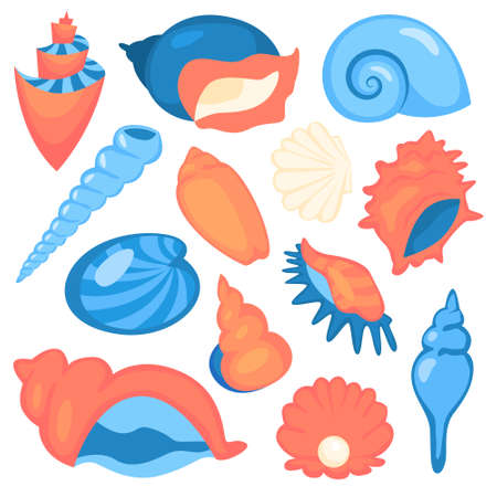 Seashell set. Collection of marine objects. Star and spiral