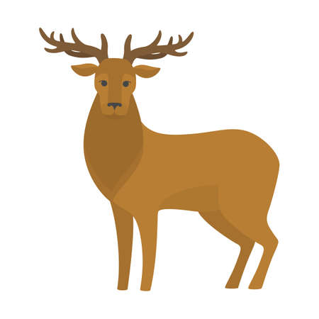 Deer with big antler. Elegant wild animal. Stag with brown fur. Isolated flat vector illustration