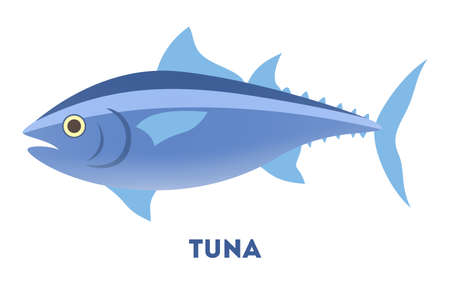 Tuna fish from the ocean or sea. Idea of fishing and seafood. Widlife in the water. Flat vector illustration