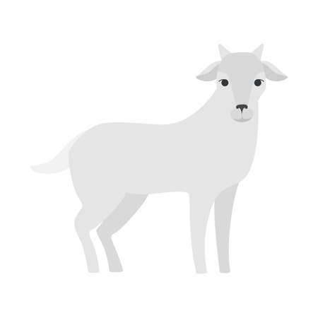 Cute goat from the farm. Domestic cattle animal with horn. Isolated flat vector illustration
