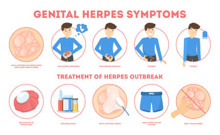 Genital herpes symptoms. Infectious dermatology disease illustration Ilustração