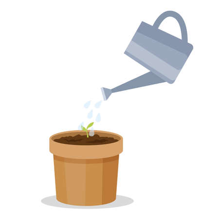 Growing a plant in the pot. Watering small green sprout. Gardening recommendation. Isolated flat vector illustration