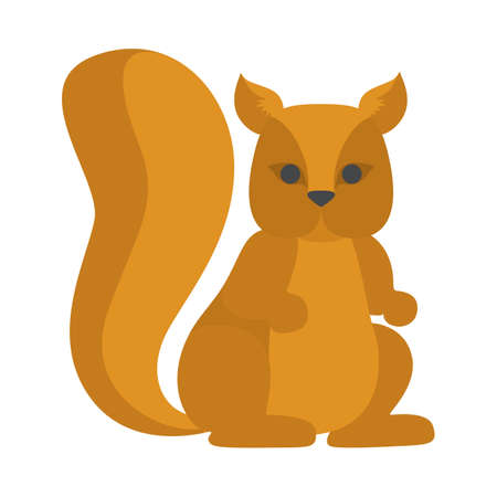 Cute squirrel from the forest. Wild animal
