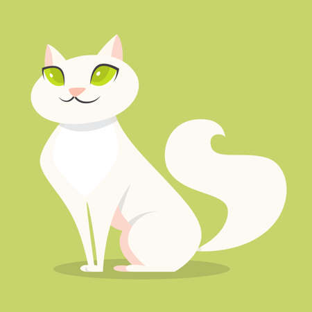 Cute funny cat with white fur sitting