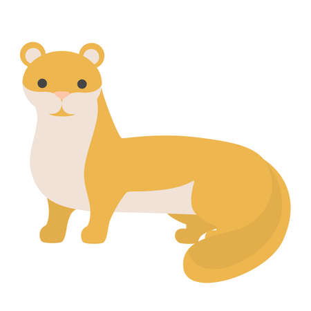 Ferret animal. Domestic polecat with fluffy fur. Pet weasel. Isolated flat vector illustration Ilustracja