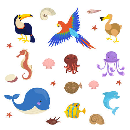 Tropical creature set. Collection of marine character and wild bird. Jellyfish and dolphin, starfish and ara. Isolated vector illustration in cartoon style