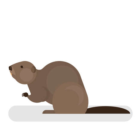 Beaver character. Brown mammal animal. Forest and wildlife. Long teeth. Isolated vector illustration in cartoon style
