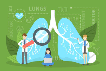 Doctor standing at big lungs. Idea of health and medical treatment. Healthy pulmonary system. Internal organ. Doctor check with stethoscope. Isolated vector illustration in cartoon style