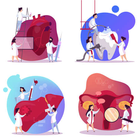Doctor and internal organ set. Human anatomy concept. Heart, womb, tooth and liver. Medical worker make diagnosis. Idea of health care. Isolated vector illustration in cartoon style