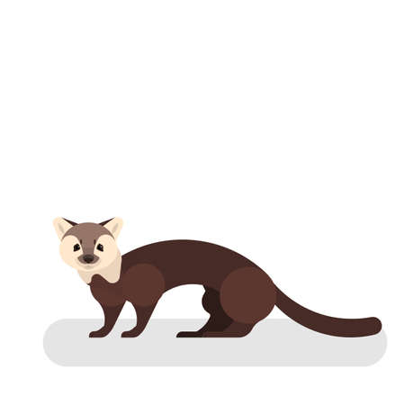 Marten animal. Wild mammal. Forest predator and hunter. Creature with brown fur. Isolated vector cartoon illustration