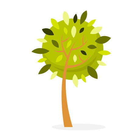 Green tree. Floral park element for design. Brown branch. Wood or forest symbol. Vector illustration in cartoon style