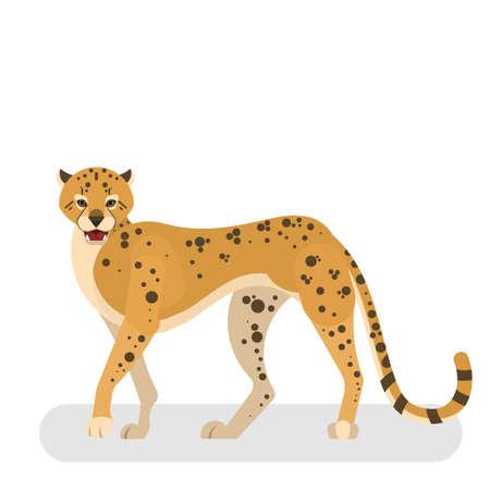 African wild cheetah. Leopard in a wildlife. Illustration