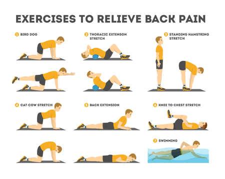 Set di esercizi per alleviare il mal di schiena. Stretching e allenamento Vettoriali