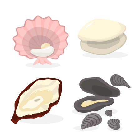 Oyster and clam set. Collection of seafood Ilustración de vector