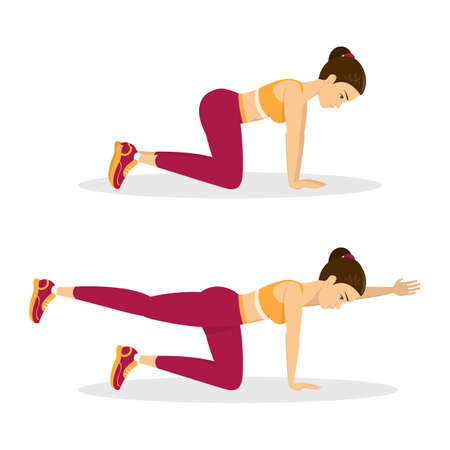 Woman doing bird dog exercise. Exercise for balance, back and ABS. Fitness and healthy lifestyle. Back pain reduce. Training for muscle. Isolated vector illustration in cartoon style