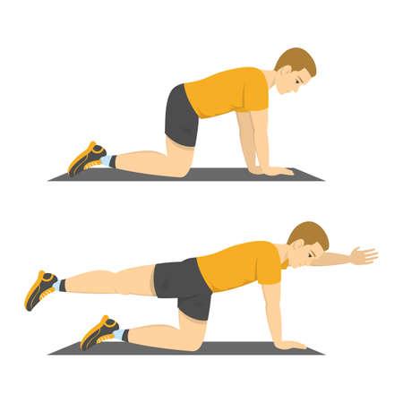Hombre haciendo ejercicio de perro pájaro. Ejercicio de equilibrio, espalda y abdominales. Fitness y estilo de vida saludable. Reducir el dolor de espalda. Entrenamiento para músculos. Ilustración de vector aislado en estilo de dibujos animados