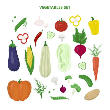 Set of vegetables. Fresh organic food. Broccoli and carrot Illustration