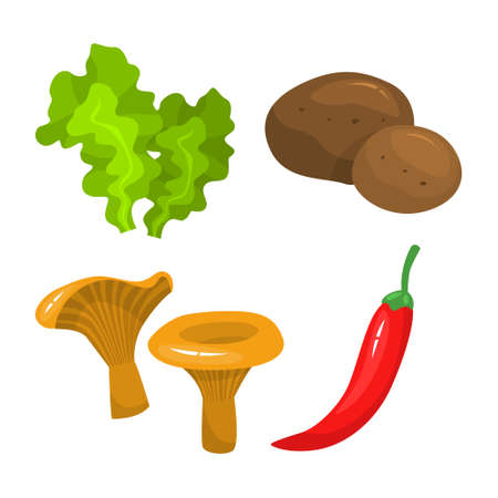 Set of vegetables. Fresh organic food. Mushroom, salad, potato and pepper. Vegetarian meal. Isolated vector illustration in cartoon style Illusztráció