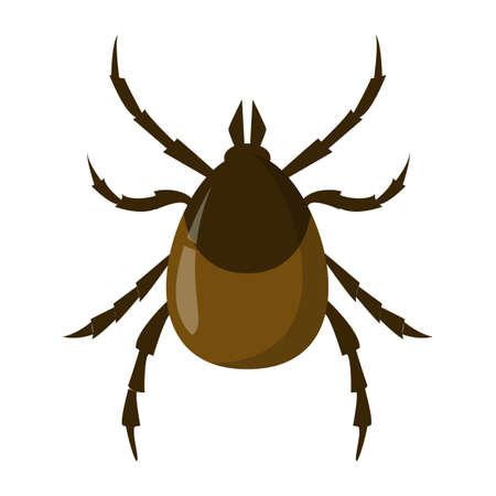 Mite insect. Encephalitis parasite, brown bug. Dangerous for human creature. Vector illustration in cartoon style isolated