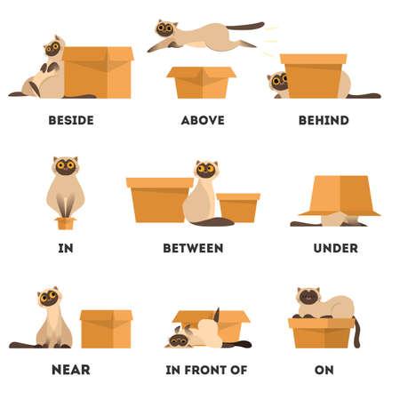 Katze und Box-Set. Präpositionskonzept lernen. Tier über und hinter, in der Nähe und unter der Kiste.
