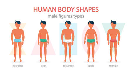 Male body shapes set. Triangle and rectangle, pear and apple 向量圖像