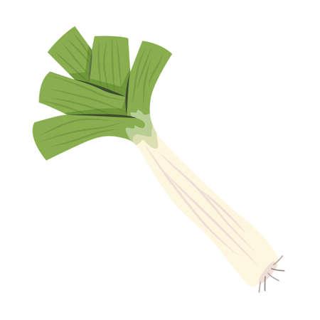 Leek green vegetable. Fresh natural vegetarian food.