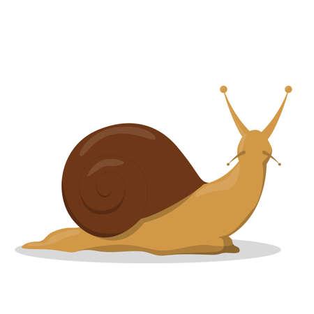 Escargot brun de jardin. Idée d'animal lent, créature.