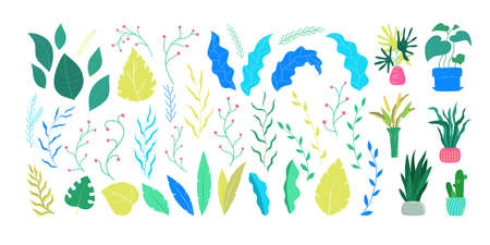House plants set. Green healthy leaves, flowers, berries, leafs, wreaths, laurel for decoration. Isolated flat vector illustration