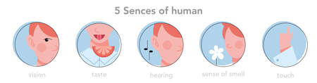 Five types of human sense infographics. Vision through eye, smell with nose, taste with tongue. Sensory perception through hand touch. Isolated flat vector illustration