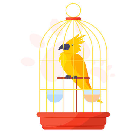 Yellow parrot in a cage. Tropical bird macaw. Exotic wild creature