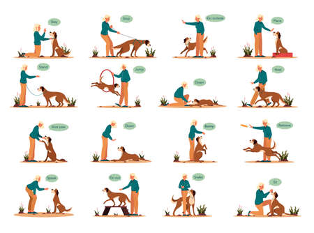 Woman training her pet dog set. Collection of happy puppy having command