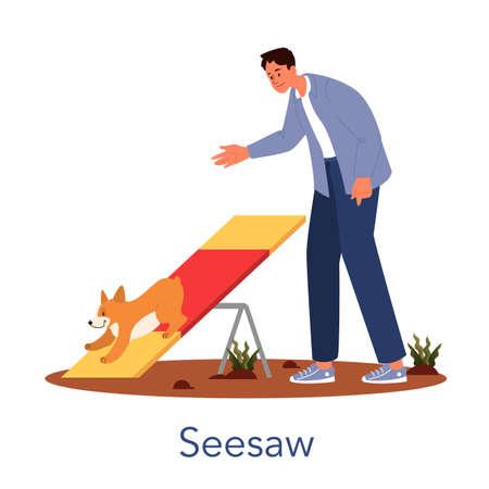 Dog agility seesaw. Training exercise for pet. Man training his pet dog.