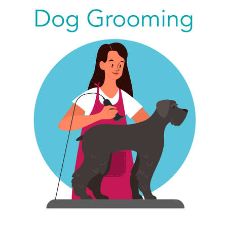 Professional barber grooming dog. Woman caring of pet fur 写真素材 - 143438404