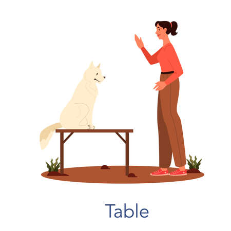 Dog agility table. Training exercise for pet. Woman training her pet