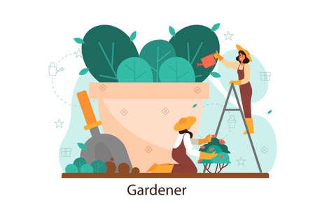 Woman watering flower in the pot. Idea of gardening and horticultural