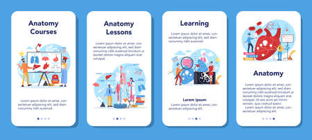 Anatomy school subject mobile application banner set. Internal