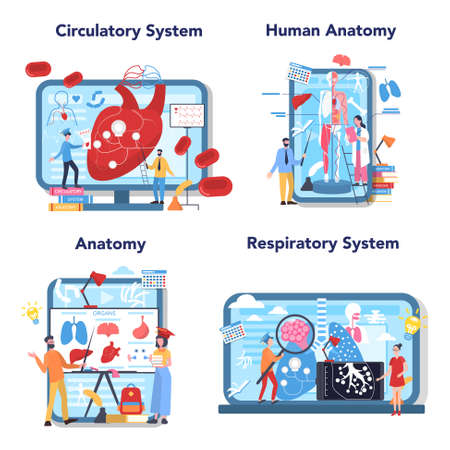 Anatomy education online service or platform set. Internal human  イラスト・ベクター素材