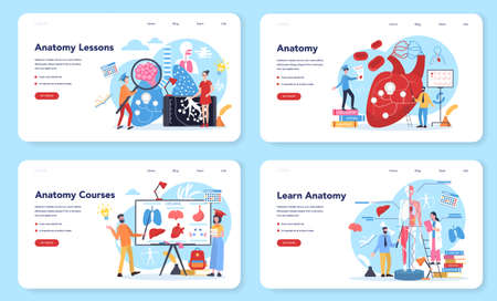 Anatomy school subject web banner or landing page set. Internal 向量圖像