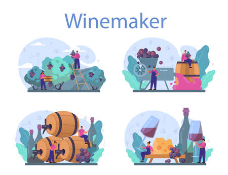 Wine maker concept set. Grape wine in a wood barrel, bottle  イラスト・ベクター素材