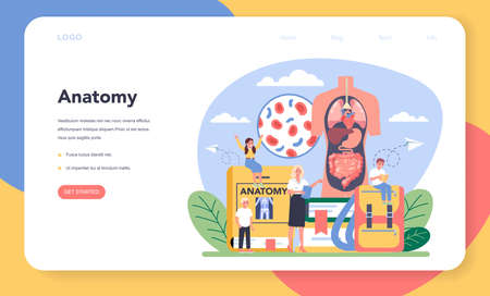 Anatomy school subject web banner or landing page.