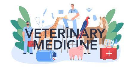 Veterinarian medicine typographic header. Veterinary doctor checking