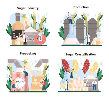 Sugar production industry set. Saccharose and fructose extracted