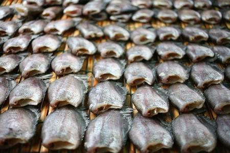pectoralis: Close up of Snake Skin Gourami Fish, Pla Salit (Trichogaster pectoralis) desiccated, thai food