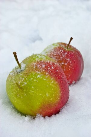 Two juicy apples lying on the snow