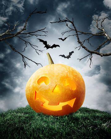 halloween pumpkin on field. Dark illustration Stock Illustration - 7978752