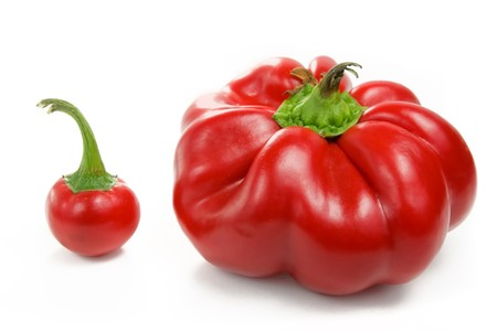 healthy llifestyle: big and small red peppers over white