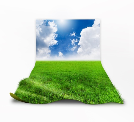 3D grass with sky background image  Stock Photo