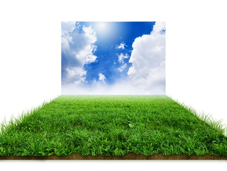 3D grass with sky background image  版權商用圖片