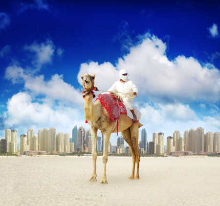 Camel on Dubai Marina Beach, United Arab Emirates photo